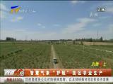 """智慧气象""""护航""""我区农业生产-2018年3月24日"""