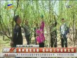 果树遭受冻害 老科技工作者来支招-2018年4月25日