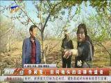 李尚智:田间地头的法律传递者-2018年4月25日