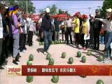 青铜峡:趣味西瓜节 农民乐翻天-2018年5月29日