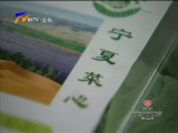 """""""宁夏菜"""":从有名气走向创名牌-2018年5月31日"""