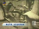 雕刻中国:当青春遇到版画-2018年6月27日
