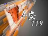 平安119-180729