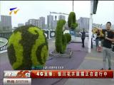 4G直播:银川花卉展摆正在进行中-180831