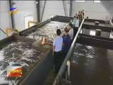 (自治区污染防治重点任务督查)盐池县水污染治理管理还需进一步加强-180820