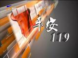 平安119--181007