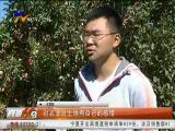 90后小伙王雪枫的田园梦-181015
