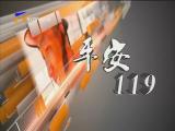 平安119-181014