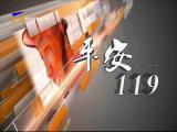 平安119-190210