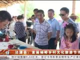 泾源县:首届杨岭乡村文化旅游节开幕-190720