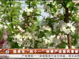 """固原市""""四个一""""林草产业显风景聚财富-190919"""