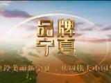 品牌宁夏-191226