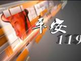 平安119-200209
