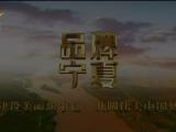 品牌宁夏-200316