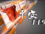 平安119-200308