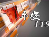 平安119-200329