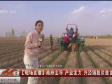 现场直播:政府主导 产业发力 兴泾镇脱贫致富路子宽-200407
