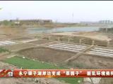 """永宁银子湖岸边变成""""菜园子""""脏乱环境亟待治理-200406"""