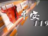 平安119-200503