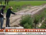 牧场废水排进农田 上百亩土地及果园受影响-200618