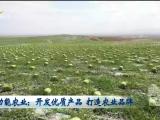 功能农业:开发优质产品 打造农业品牌-20200716