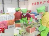 同心:深化闽宁协作 创新帮扶举措助脱贫-200704