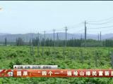 """固原:""""四个一""""描绘山绿民富新图景-200702"""