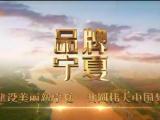 品牌宁夏-20200828