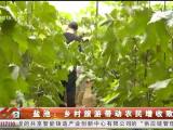 盐池:乡村旅游带动农民增收致富-20200804