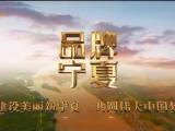 品牌宁夏-20200909