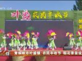 青铜峡市叶盛镇:农民丰收节 稻花香里说丰年-20200921