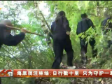 海原拐洼林场:日行数十里 只为守护一草一木-20200919