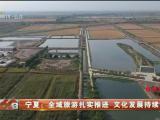 宁夏:全域旅游扎实推进 文化发展持续繁荣-20201016