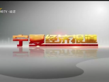 宁夏经济报道-20201111