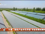 宁夏:特色产业齐头并进 农业发展成绩亮眼-20201128