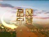 品牌宁夏-20201217