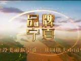品牌宁夏20210111