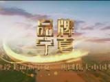 品牌宁夏-20210128
