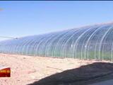 贺兰县设施农业助农增收