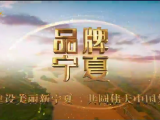 品牌宁夏-20210415