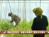 """西夏区泾河村:创新农业模式 跑出乡村振兴""""加速度""""-20210417"""