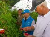 我为群众办实事| 宁夏:科技志愿服务 助力乡村振兴-20210422
