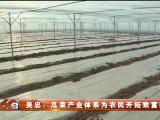 吴忠:瓜菜产业体系为农民开拓致富新路-20210417