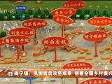 闽宁镇:巩固脱贫攻坚成果 创建全国乡村振兴示范区-20210416