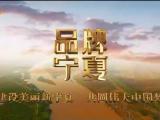 品牌宁夏-20210504