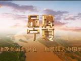 品牌宁夏-20210709