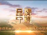 品牌宁夏-20210720