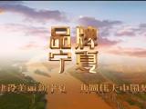 品牌宁夏-20210804