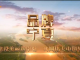 品牌宁夏-20210806