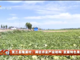 贺兰县隆源村:调优农业产业结构 发展特色果蔬产业-20210804